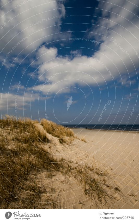 ostsee Natur Wasser Himmel Meer blau Sommer Strand Ferien & Urlaub & Reisen Einsamkeit Ferne Sand Landschaft Küste Deutschland Umwelt Horizont