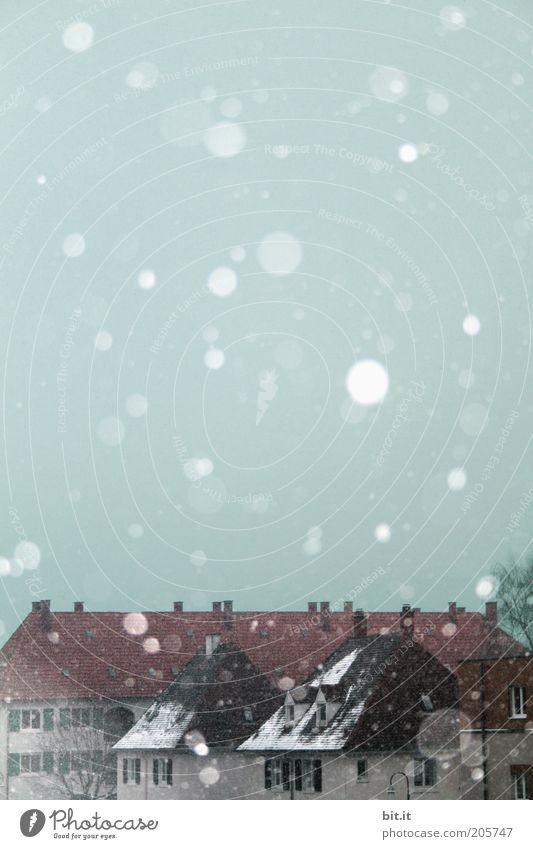 Kleine Abkühlung? Stadt Winter Haus kalt Schnee Architektur Schneefall Dach Dorf Stadtteil Schneelandschaft Schneeflocke Flocke Kleinstadt Textfreiraum oben