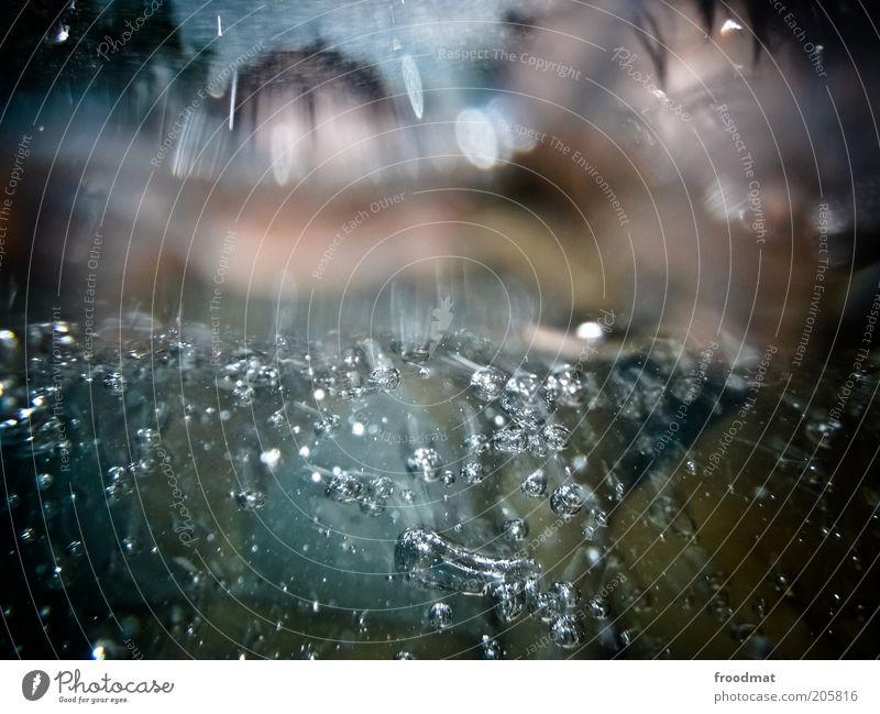 tag am meer Mensch Sommer Wasser Erholung Meer Schwimmen & Baden See Wassertropfen Lebensfreude geheimnisvoll Wellness Wohlgefühl Körperpflege tauchen