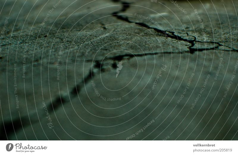 Risse2 Beton grau Asphalt kaputt Boden Bodenbelag Gedeckte Farben Makroaufnahme Menschenleer Textfreiraum unten Unschärfe Strukturen & Formen grün