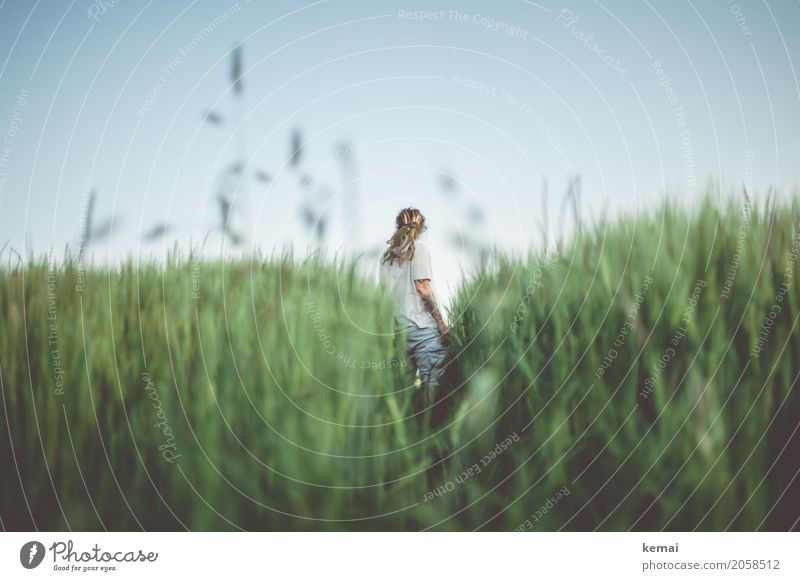 Summer greens harmonisch Wohlgefühl Zufriedenheit Erholung ruhig Freizeit & Hobby Freiheit Mensch feminin Frau Erwachsene Leben 1 Natur Pflanze