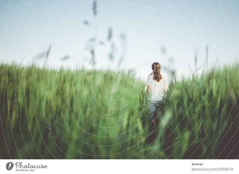 Summer Greens III Mensch Natur Pflanze Sommer grün Erholung ruhig Lifestyle feminin Freiheit Freizeit & Hobby Zufriedenheit Feld stehen authentisch Abenteuer