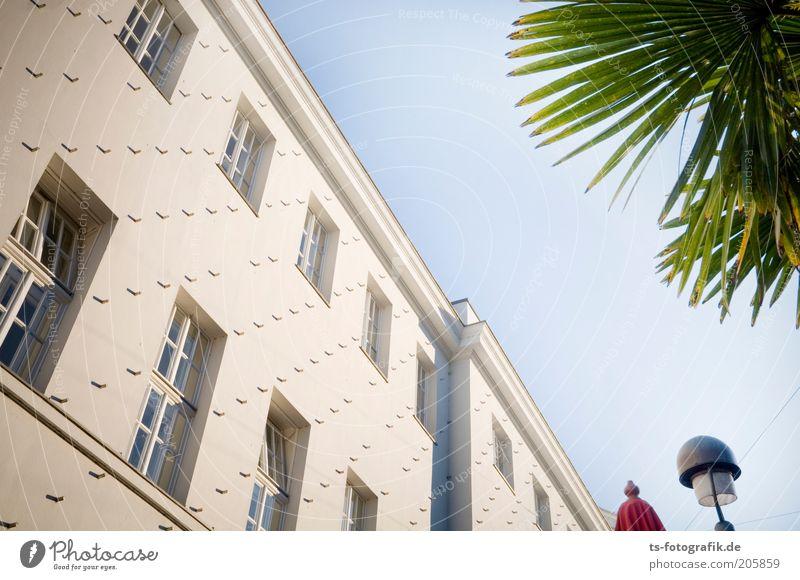 Hellraiser-Fassade Himmel grün blau Pflanze Ferne Wand Fenster Mauer Gebäude Linie braun Kunst Architektur Fassade ästhetisch