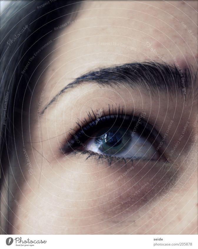 am Bewundern Mensch Jugendliche grün Auge feminin elegant nah Schminke brünett Gesicht Wimpern Augenbraue Frau Kosmetik Wimperntusche Junge Frau