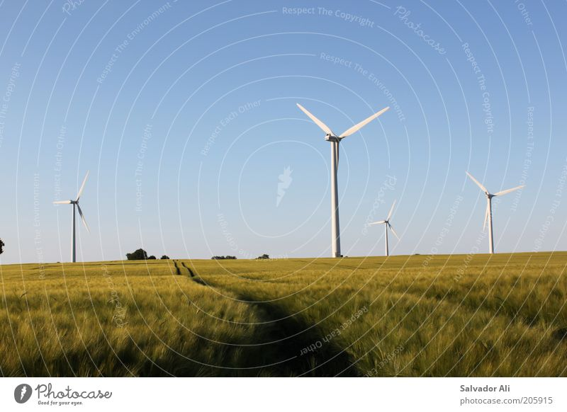 Lieber Spargel in der Luft als Atom im Blut blau Sommer Deutschland Wind Umwelt gold Europa Perspektive Hoffnung Energiewirtschaft ästhetisch Zukunft Wandel & Veränderung Klima Sauberkeit Windkraftanlage