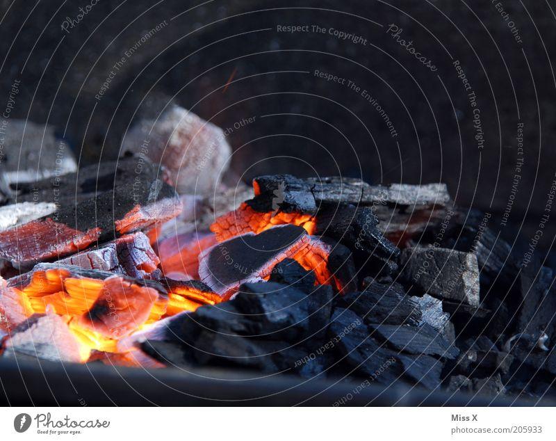 wieder heiss... heiß Grillen Grillkohle Wärme Feuer glühend Farbfoto Nahaufnahme Menschenleer Schwache Tiefenschärfe Holzkohle Kohle brennen heizen aktivieren