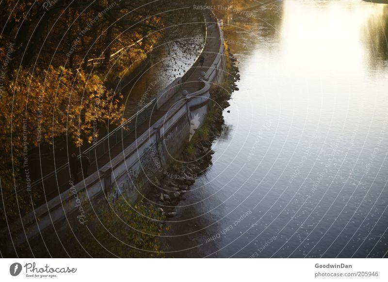 Promise less or do more Natur Wasser Baum Pflanze Herbst Gefühle Park Stimmung Wetter Umwelt einfach Fußweg Flussufer Kanal herbstlich Flußwehr