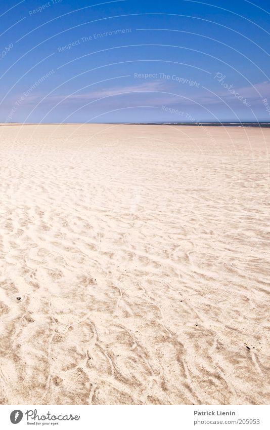 endless beach Umwelt Natur Landschaft Sommer Klima Wetter Schönes Wetter Wind Küste Strand Nordsee Meer Stimmung Leben Muster Freiheit Ferne
