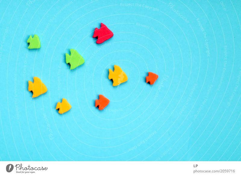 Aquarium Sommerurlaub Güterverkehr & Logistik Dienstleistungsgewerbe Medienbranche Werbebranche Business Mittelstand Unternehmen Karriere Erfolg Sitzung