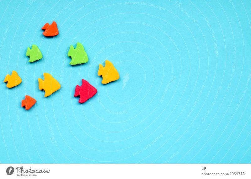 farbiger Fisch auf blauem Hintergrund Ferien & Urlaub & Reisen Lifestyle Bewegung Business Tourismus Menschengruppe Freizeit & Hobby Erfolg Abenteuer Zeichen