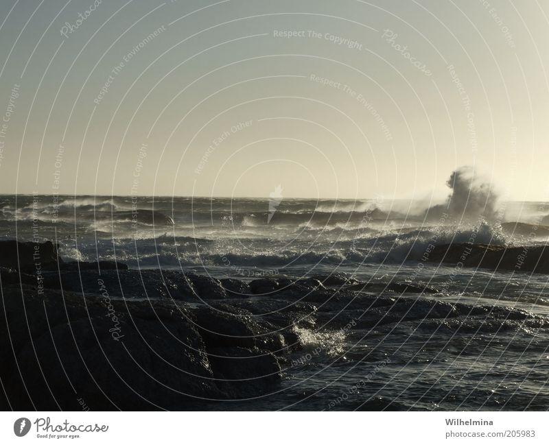 I Sea U Urelemente Wasser Himmel Wolkenloser Himmel Horizont Unwetter Wind Sturm Felsen Wellen Küste Bucht Meer Bewegung Farbfoto Gedeckte Farben Außenaufnahme