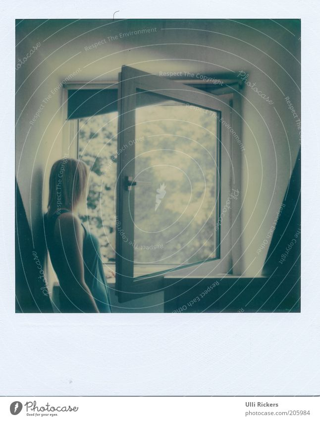 . Wohnung Innenarchitektur Raum feminin 18-30 Jahre Jugendliche Erwachsene Sonnenlicht Sommer Schönes Wetter Fenster Kleid blond beobachten Denken Blick stehen