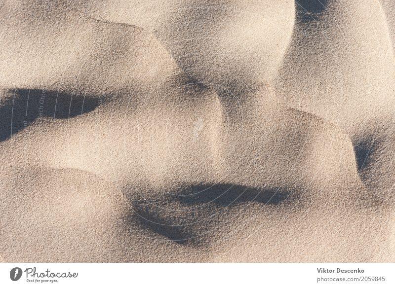 Schatten auf dem Sand Ferien & Urlaub & Reisen Sommer Sonne Strand Meer Natur Landschaft Wind Küste Ostsee natürlich weich gelb Düne wüst Verschiebung