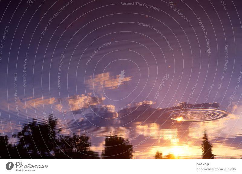 Orbitaler Steinschlag Umwelt Natur Landschaft Pflanze Himmel Wolken Sonne Sonnenaufgang Sonnenuntergang Sommer Baum Gefühle Stimmung ruhig Erholung Frieden