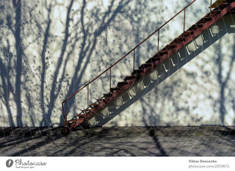 Treppen hoch die Wand mit Schatten Design Haus Kunst Natur Schönes Wetter Baum Blatt Stadtzentrum Gebäude Architektur Fassade Straße Stein Metall Stahl alt weiß