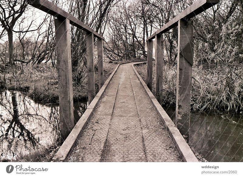 brücke Brücke Fototechnik