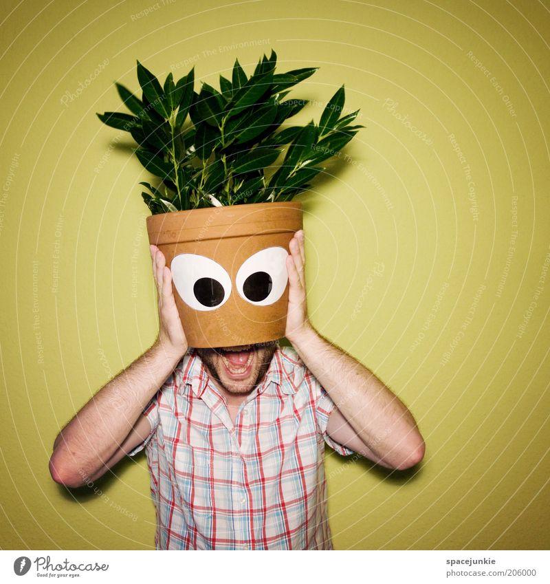 Blumenkopf maskulin Mund Hand Pflanze Blatt Grünpflanze Topfpflanze Blick Blumentopf Zimmerpflanze Auge lustig Surrealismus verstecken Versteck Farbfoto