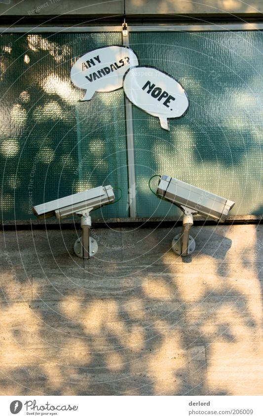 Control Wand Stein Mauer Kunst Glas Fassade Schilder & Markierungen Design ästhetisch Schriftzeichen Sicherheit Kultur Hinweisschild beobachten Zeichen Videokamera