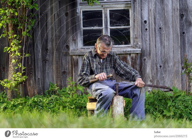 Der 95 Jahre alte Alwin dengelt die Sense. Fitness Sport-Training Arbeit & Erwerbstätigkeit Beruf Arbeitsplatz Landwirtschaft Forstwirtschaft Handwerk Werkzeug