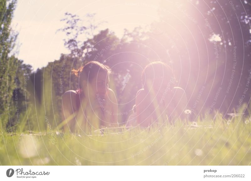 Hitzefrei. Bitteschön. Lifestyle Mensch feminin Junge Frau Jugendliche Erwachsene Freundschaft 2 Umwelt Natur Landschaft Himmel Sonne Schönes Wetter Baum Gras