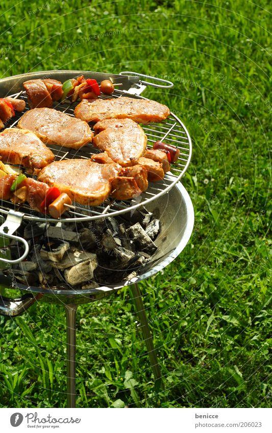 BBQ Griller Grillen bbq Fleisch spieße spießchen Gras silber Menschenleer Ernährung Sommer Außenaufnahme Grillkohle Kohle kohlegrill Feuer heiß