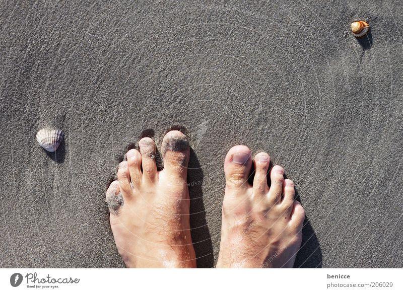 füße im sand Fuß Zehen Strand Meer Ferien & Urlaub & Reisen Gefühle Sand Vogelperspektive Sandstrand Muschel Suche Mann Selbstportrait Urlaubsfoto