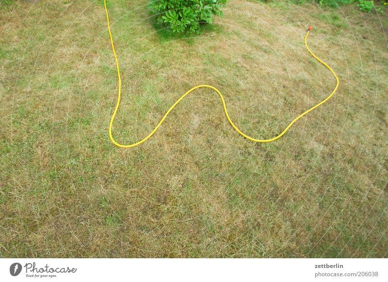 Unter dem Durchschnitt Wasser gelb Wiese Gras Garten Park Linie Rasen trocken gießen Schlauch Dürre vertrocknet Gartenarbeit Mangel Wasserschlauch