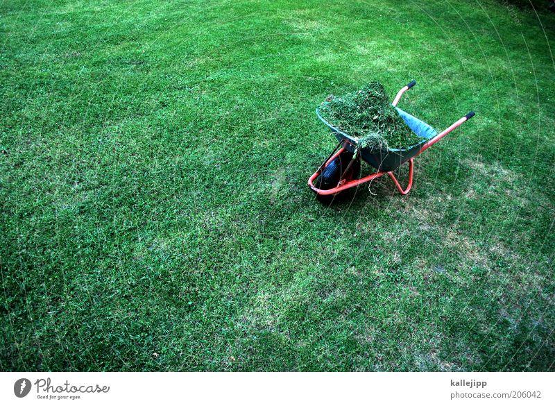 ernte 23 Arbeit & Erwerbstätigkeit Gartenarbeit Umwelt Natur Pflanze Sommer Klima Gras Schubkarre Heu voll Ernte rasenmähen Haufen Farbfoto mehrfarbig