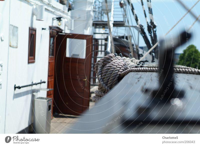 Segelschiff Stil Erholung ruhig Segeln Ferien & Urlaub & Reisen Tourismus Ausflug Ferne Sommerurlaub Seil An Bord Vertrauen Sicherheit diszipliniert