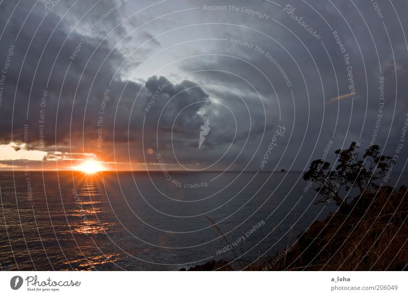 6.13 am Landschaft Urelemente Wasser Himmel Gewitterwolken Horizont Sonnenaufgang Sonnenuntergang schlechtes Wetter Baum Hügel Küste Meer glänzend