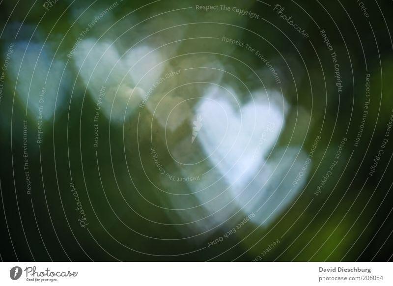 I love mother nature weiß grün Liebe Gefühle Hintergrundbild Herz Symbole & Metaphern Zeichen Textfreiraum Verliebtheit Erscheinung Gegenlicht Verzerrung