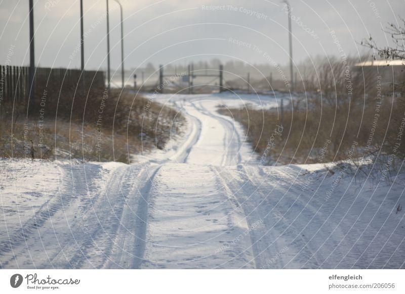 Schneestraße Natur Winter ruhig Straße kalt Schnee Landschaft Frost Ende Tor Verkehrswege Zaun Schneelandschaft Reifenspuren Sackgasse Schneespur