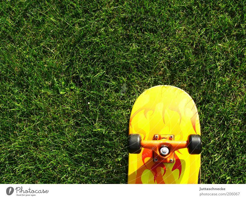 Board on Green grün Sommer gelb Wiese Sport Gras Garten orange Rasen Skateboarding Rad Skateboard Rolle stagnierend Jugendkultur Achse