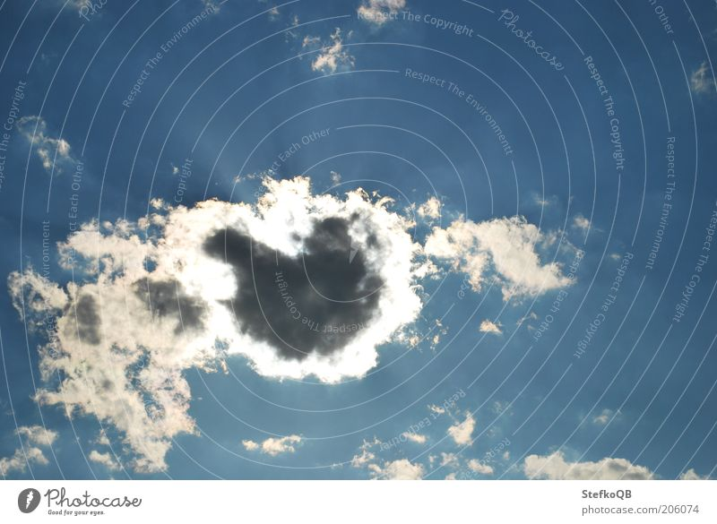 Herzensangelegenheit. Luft Himmel nur Himmel Wolken Sonne Sommer Schönes Wetter Ferne Unendlichkeit blau weiß Fernweh Leichtigkeit stagnierend Farbfoto