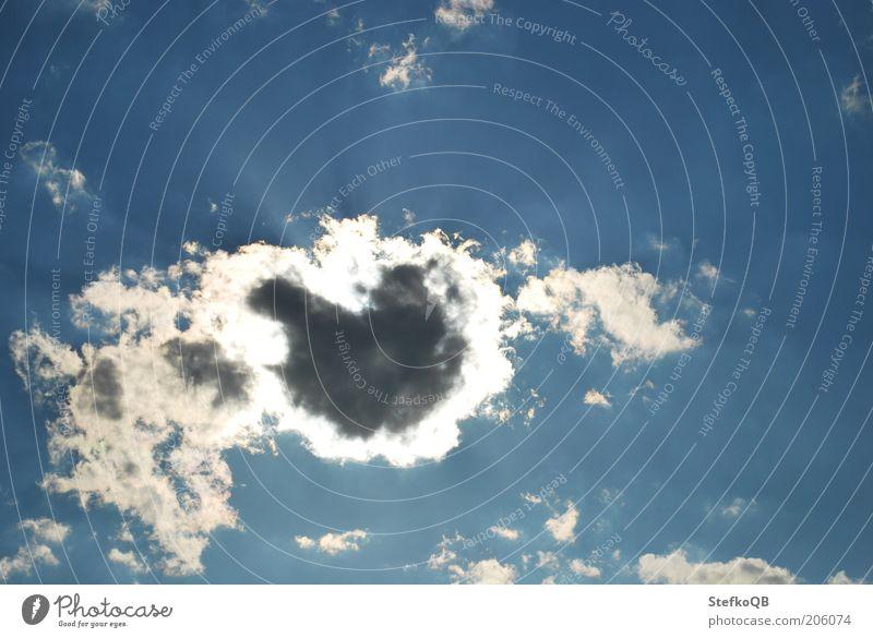 Herzensangelegenheit. Himmel weiß Sonne blau Sommer ruhig Wolken Ferne Luft Unendlichkeit leuchten Schönes Wetter Fernweh Leichtigkeit stagnierend