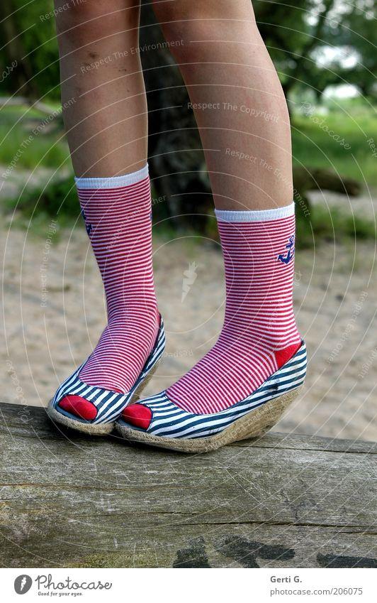 KnieStrumpfPose Baum Sand Schuhe Beine paarweise stehen Körperhaltung Baumstamm Strümpfe Gleichgewicht gestreift Anker