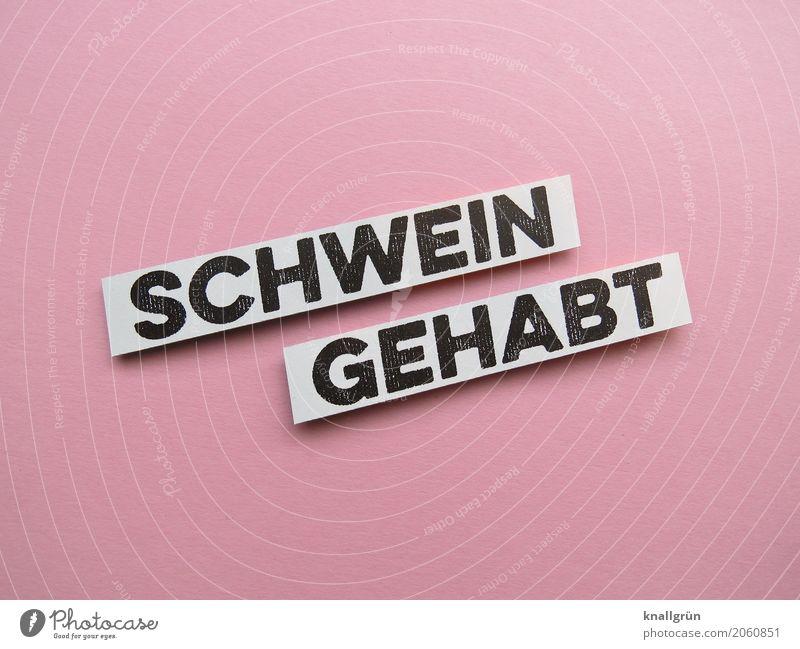 SCHWEIN GEHABT Schriftzeichen Schilder & Markierungen Kommunizieren eckig Glück rosa schwarz weiß Gefühle Stimmung Zufriedenheit Lebensfreude Begeisterung