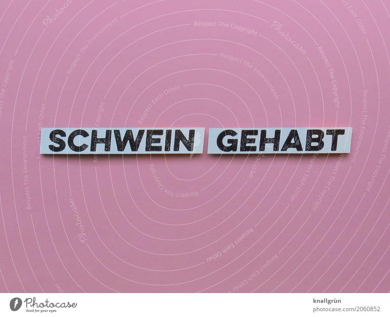 SCHWEIN GEHABT Schriftzeichen Schilder & Markierungen Kommunizieren eckig Glück rosa schwarz weiß Gefühle Stimmung Lebensfreude Neugier Überraschung erleben
