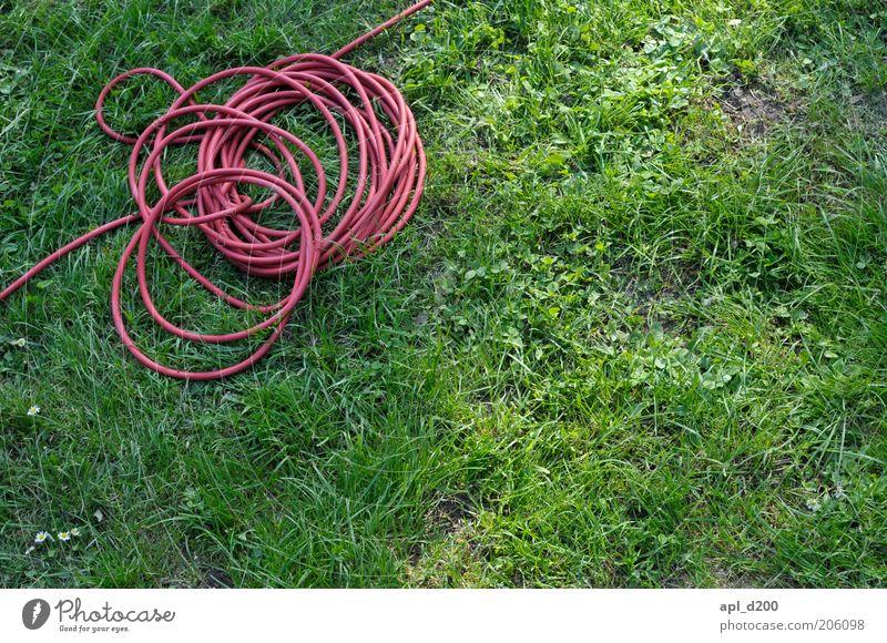 Roter faden Kabel Technik & Technologie Umwelt Garten liegen grün rot Kabelsalat Leitfaden Elektrizität Farbfoto mehrfarbig Außenaufnahme Tag Licht Sonnenlicht