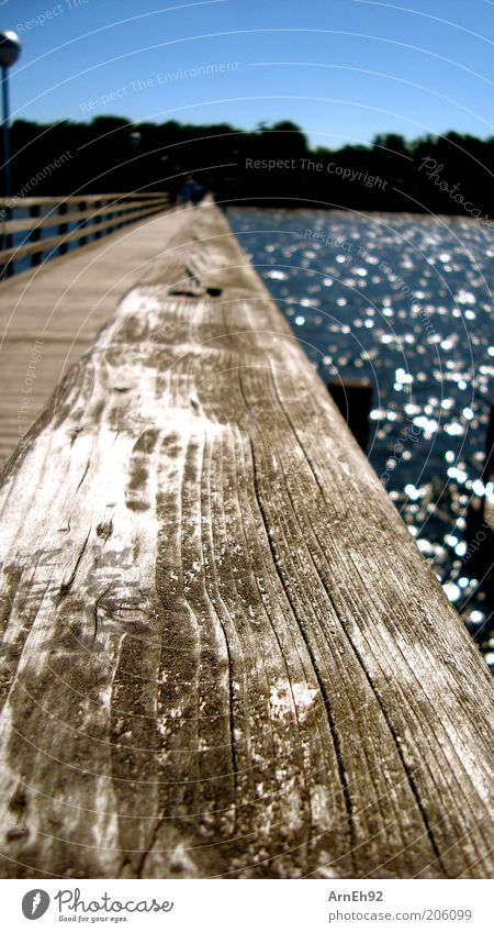 Seebrücke Freiheit Sommer Sonne Meer Wasser Wolkenloser Himmel Schönes Wetter Wärme Küste Ostsee Brücke beobachten Blick Farbfoto Außenaufnahme Makroaufnahme