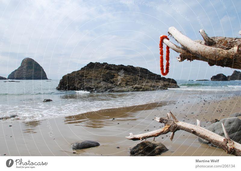 Oregon Coast Himmel Natur Ferien & Urlaub & Reisen blau Wasser Sommer Meer rot Strand Ferne Küste Freiheit Holz Stein Felsen Insel