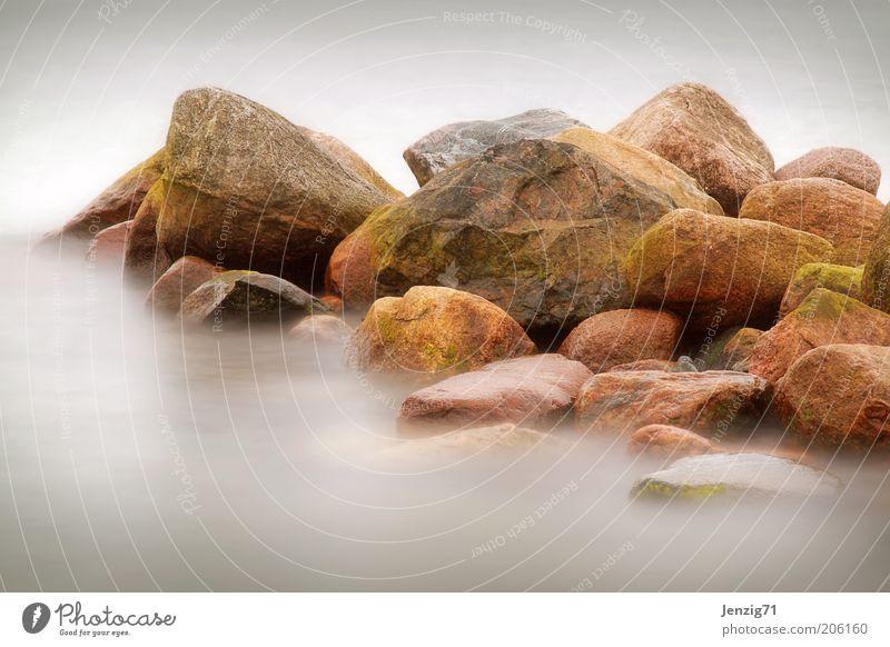 Stein.Zeit. Umwelt Natur Landschaft Urelemente Wasser Küste Meer Moos Farbfoto Gedeckte Farben Außenaufnahme Detailaufnahme Abend Dämmerung Licht