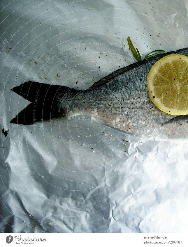 Alu-Fisch Zitrone Dorade kochen & garen Flosse Schwanz gedünstet Aluminium Folie Metallfolie Meer Ernährung Protein Abendessen Festessen Zitronenscheibe