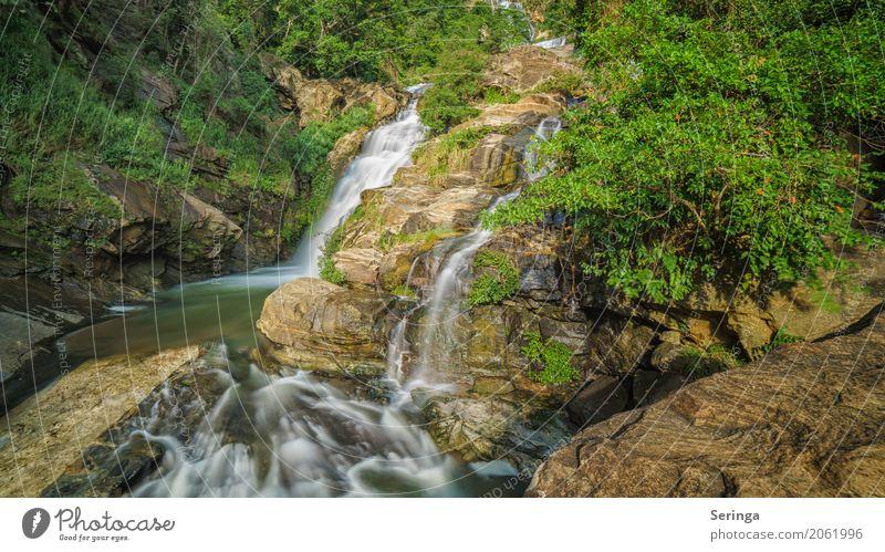 Bergab Ferien & Urlaub & Reisen Tourismus Ausflug Abenteuer Sommerurlaub wandern Umwelt Natur Landschaft Pflanze Tier Frühling Schönes Wetter Wasserfall fallen