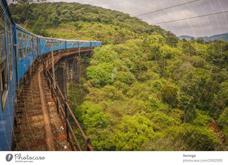 Mit dem Zug unterwegs Ferien & Urlaub & Reisen Tourismus Ausflug Expedition Sommerurlaub Sonne Berge u. Gebirge wandern Umwelt Natur Landschaft Pflanze Tier