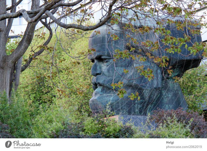 AST 10 | Karl im Grünen Umwelt Natur Pflanze Frühling Baum Chemnitz Sehenswürdigkeit Wahrzeichen Denkmal Karl Marx Statue Skulptur stehen Wachstum einzigartig