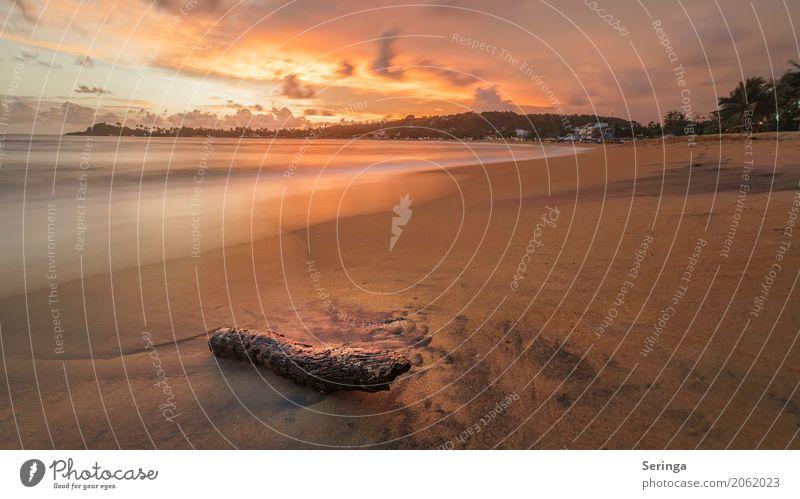 Sonnenuntergangsstimmung Ferien & Urlaub & Reisen Tourismus Abenteuer Ferne Sommer Strand Meer Wellen Umwelt Natur Landschaft Pflanze Tier Sand Wasser Horizont