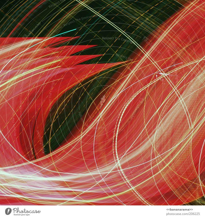 krizzekrazze rot Linie hell Energie modern Muster leuchten Dynamik Wissenschaften Kurve chaotisch Langzeitbelichtung durcheinander Belichtung Lichtspiel