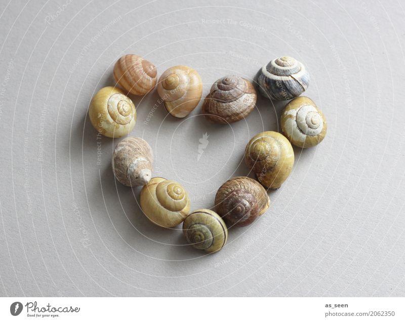 Strandliebe Design exotisch Gesundheit Gesundheitswesen Seniorenpflege Alternativmedizin Wellness harmonisch Sinnesorgane Erholung ruhig Meditation