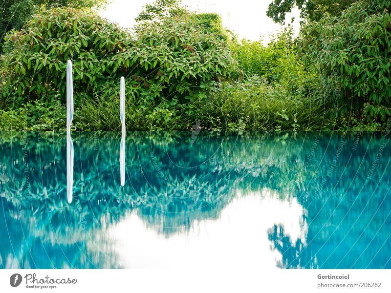 Oberflächenspannung Sommer Sommerurlaub Himmel blau grün Schwimmbad Freibad Leiter Sträucher Wasseroberfläche Glätte ruhig türkis Spiegelbild Farbfoto